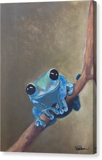 Blue Tree Frog On A Branch Canvas Print