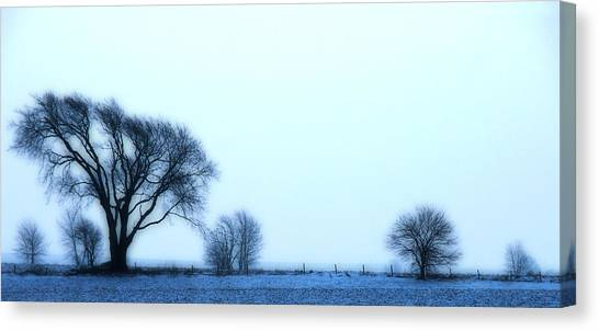 Blue Treeline Canvas Print