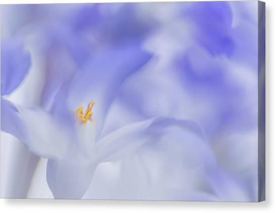 Blue Waves Canvas Print by Roelof De Hoog