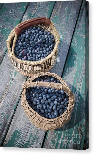 Blueberries Canvas Print - Blueberry Baskets by Edward Fielding