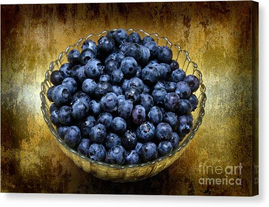 Blueberry Elegance Canvas Print