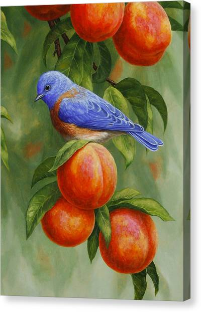 Fruit Trees Canvas Print - Bluebird And Peaches Greeting Card 2 by Crista Forest