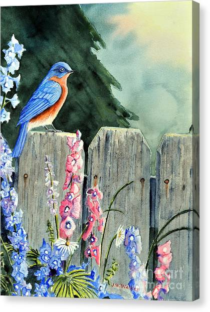 Bluebird Morning Canvas Print