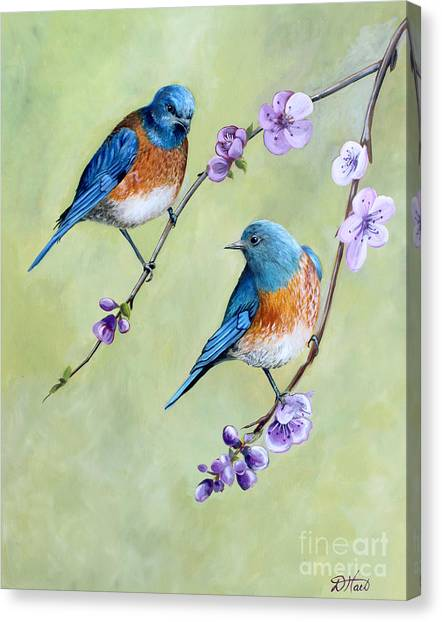 Bluebirds And Blossoms Canvas Print