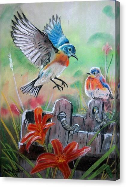 Bluebirds Bucket Canvas Print