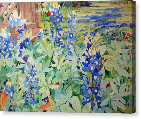 Bluebonnet Beauties Canvas Print