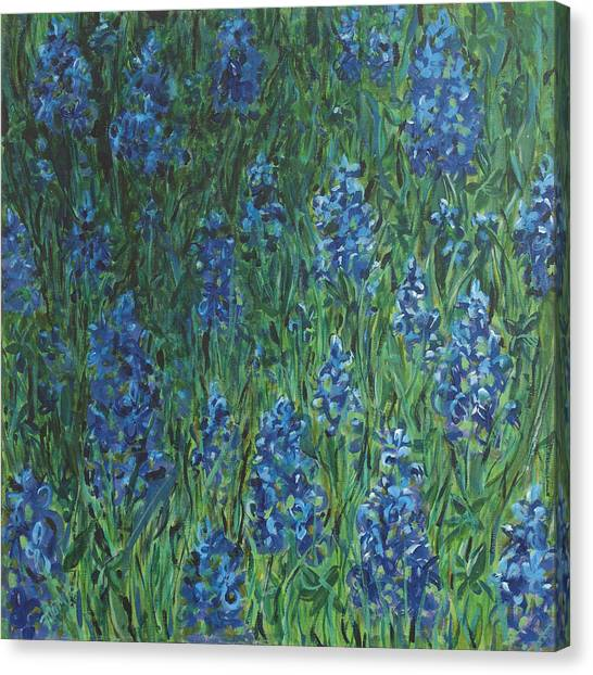 Bluebonnet Square Canvas Print by Molly Benson