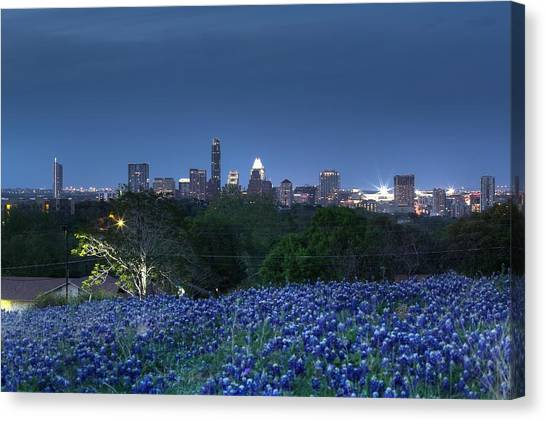 Bluebonnet Twilight Canvas Print