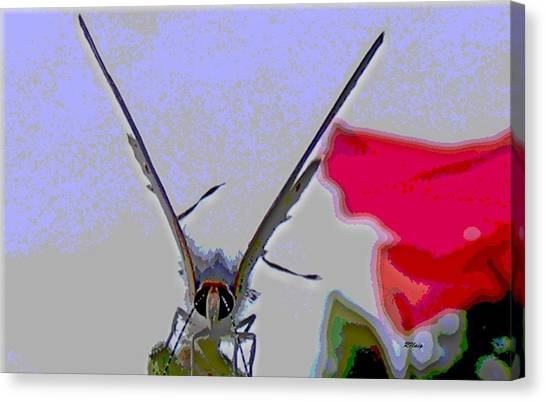 Blustery Day Canvas Print by Rebecca Flaig