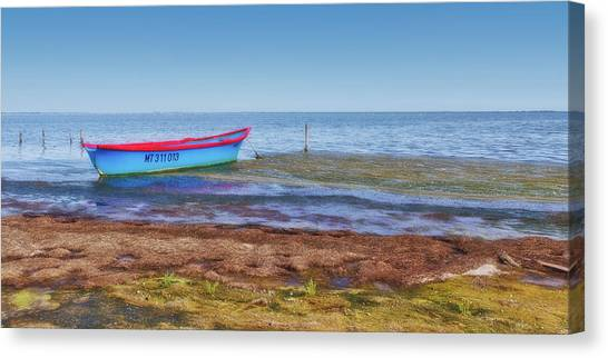 Boat At The Pond Canvas Print