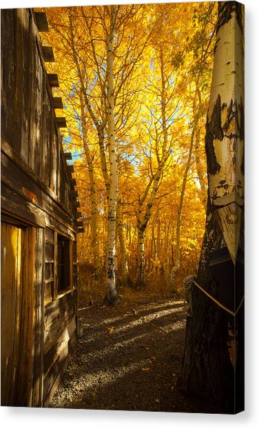 Boat House Among The Autumn Leaves  Canvas Print
