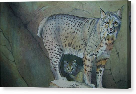 Bobcat And Baby Canvas Print by Carmen Durden