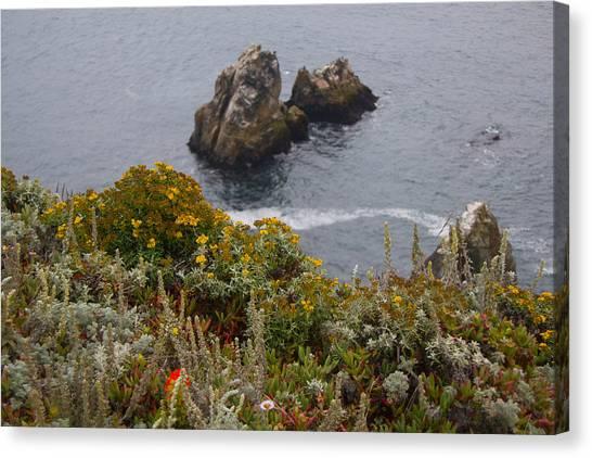 Bodega Flowers Canvas Print