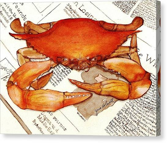 Boiled Crab Canvas Print