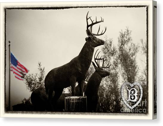 Boldt Castle Deer Canvas Print
