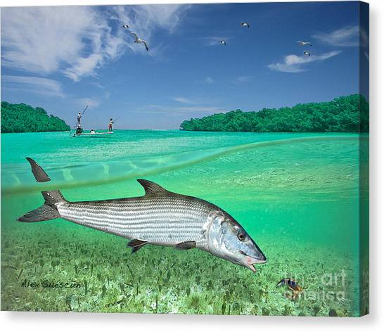 Bonefish Flat Canvas Print