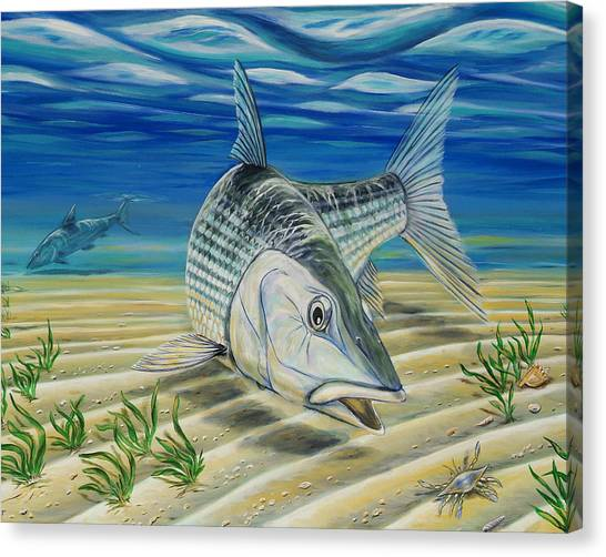 Bonefish On The Flats Canvas Print