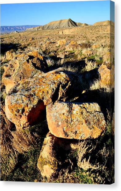 Bookcliffs 138 Canvas Print by Ray Mathis