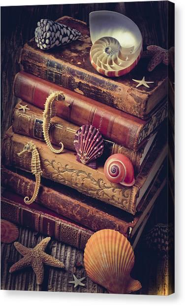Seashell Fine Art Canvas Print - Books And Sea Shells by Garry Gay
