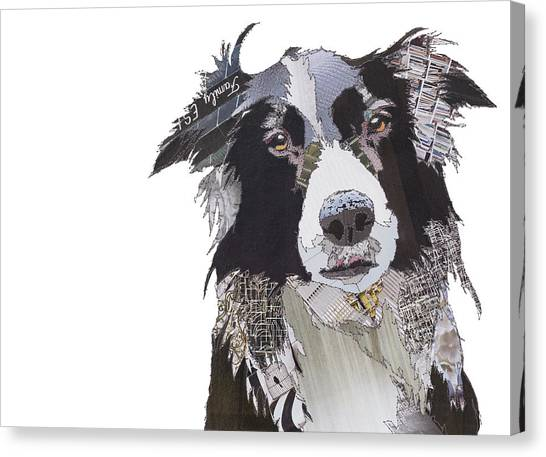 Border Collies Canvas Print - Border Bracken by Catherine Kleeli