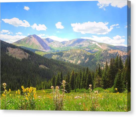 Boreas Pass Summer Canvas Print