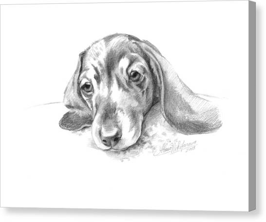 Bored. Little Dachshund Canvas Print