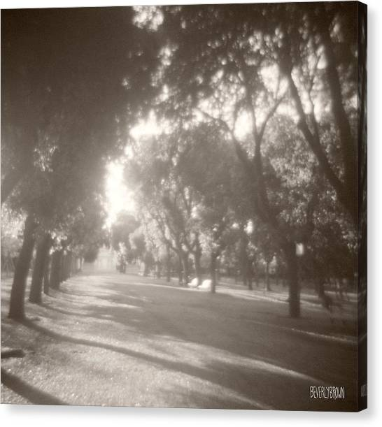 Roman Art Canvas Print - Borghese Gardens Path by Beverly Brown