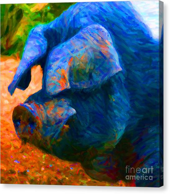 Pig Farms Canvas Print - Boss Hog - 2013-0108 - Square by Wingsdomain Art and Photography