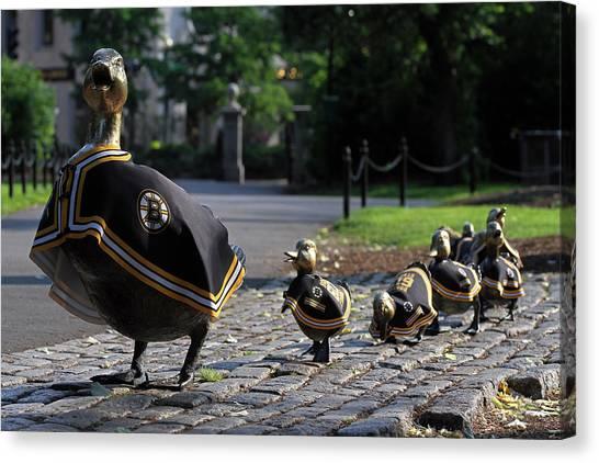 Boston Bruins Ducklings Canvas Print