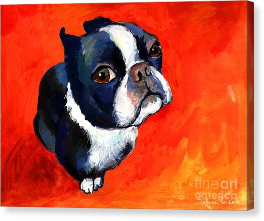 Red Eye Canvas Print - Boston Terrier Dog Painting Prints by Svetlana Novikova