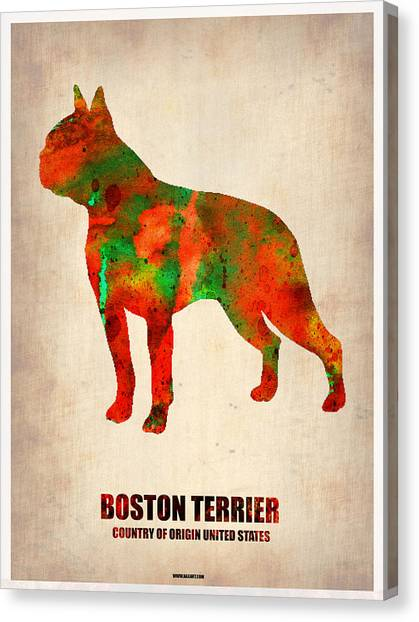 Boston Canvas Print - Boston Terrier Poster by Naxart Studio