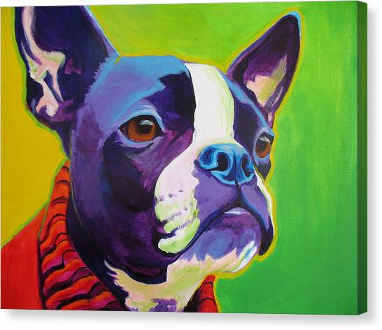 Boston Terriers Canvas Print - Boston Terrier - Ridley by Alicia VanNoy Call