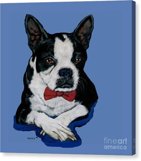 Boston Terrier With A Bowtie Canvas Print