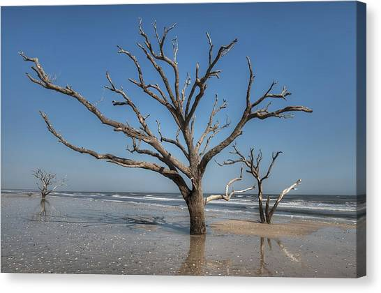 Botany Bay And Edisto Beach Canvas Print