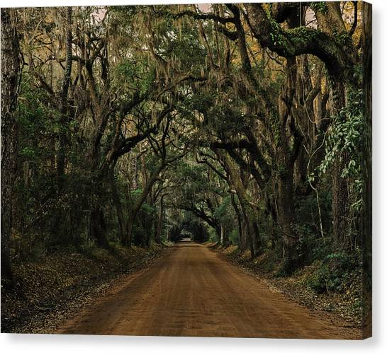 Botany Bay Road Canvas Print