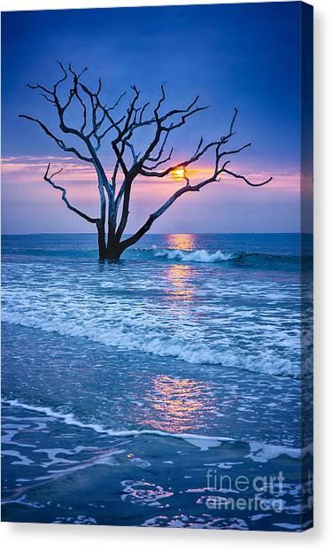 Botany Bay Sunrise 2 Canvas Print