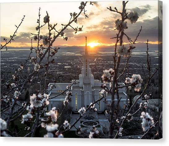 Bountiful Spring Canvas Print