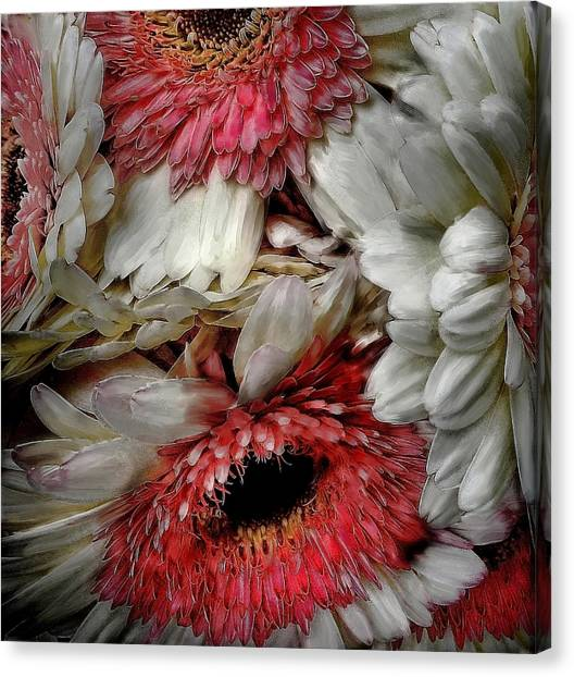 Bouquet Canvas Print by Cary Shapiro