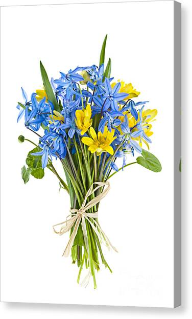 Perennial Canvas Print - Bouquet Of Fresh Spring Flowers by Elena Elisseeva