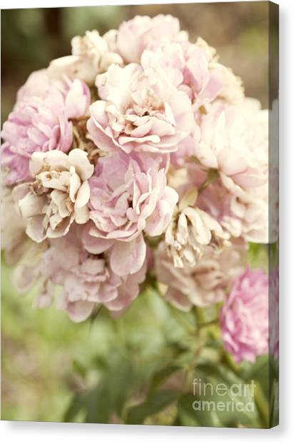 Beautiful Canvas Print - Bouquet Of Vintage Roses by Juli Scalzi