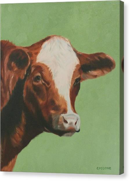 Bovine Beauty Canvas Print