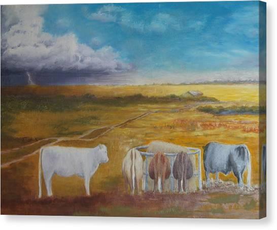 Bovine Theory Canvas Print