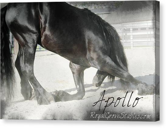 Bowing Before A Queen Canvas Print