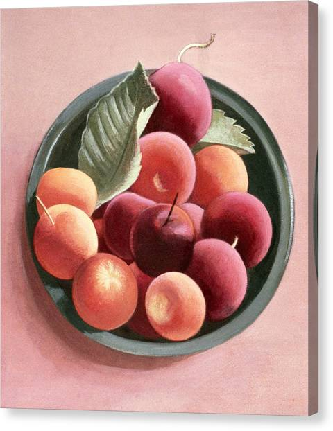 Tangerine Canvas Print - Bowl Of Fruit by Tomar Levine