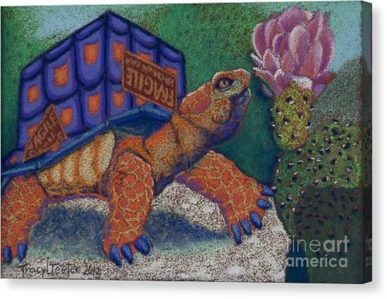 Box Turtles Canvas Print - Box Turtle by Tracy L Teeter
