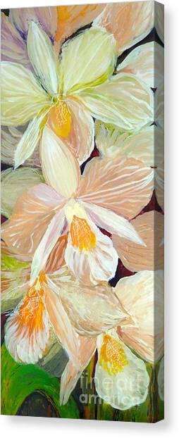 Boxed Orchids Detail Canvas Print