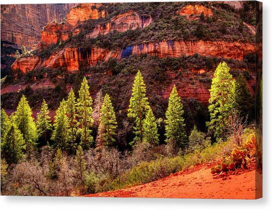 Boynton Canyon Canvas Print