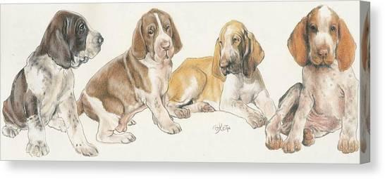 Canvas Print - Bracco Italiano Puppies by Barbara Keith