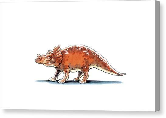 Argentinian Canvas Print - Brachyceratops Dinosaur by Deagostini/uig