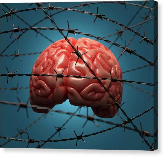 Brain And Barbed Wire Canvas Print by Ktsdesign